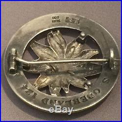 German WW2 Silver Badge Medal. Deutsher Alpenverein Edelweiss Medal
